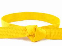 Corsi di formazione: Lean Production, Six Sigma e miglioramento della sicurezza e degli impianti - yellow_belt